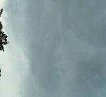 Aqua Sky by Guy Ricketts