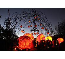 Jack-O-Lanterns 8 Photographic Print