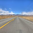 Nelson Road, Longmont, CO by activebeck2012