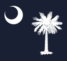 South Carolina Flag by 5thcolumn