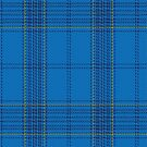 02179 Bliss in Blue, (Unidentified #1) Tartan Fabric Print Iphone Case by Detnecs2013