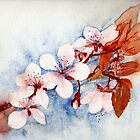 Prunus Blossom by Val Spayne