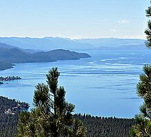 """ East Shore ~ Lake Tahoe Nevada"" by Lynn Bawden"