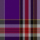02217 Attic Mystery, (Unidentified #39) Tartan Fabric Print Iphone Case by Detnecs2013
