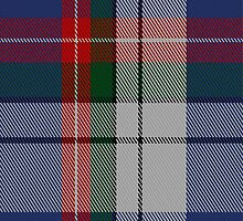 02221 Marlin Blue Zeal, (Unidentified #43) Tartan Fabric Print Iphone Case by Detnecs2013