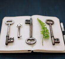 keys by Sue Hammond