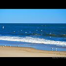 Atlantic Ocean Beach - Hampton Bays, New York by  Sophie Smith