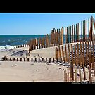 Wooden Sand Fences - Hampton Bays, New York by © Sophie W. Smith