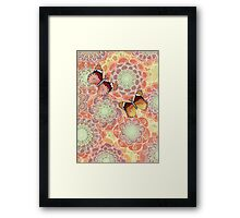Butterfly Obsession Framed Print