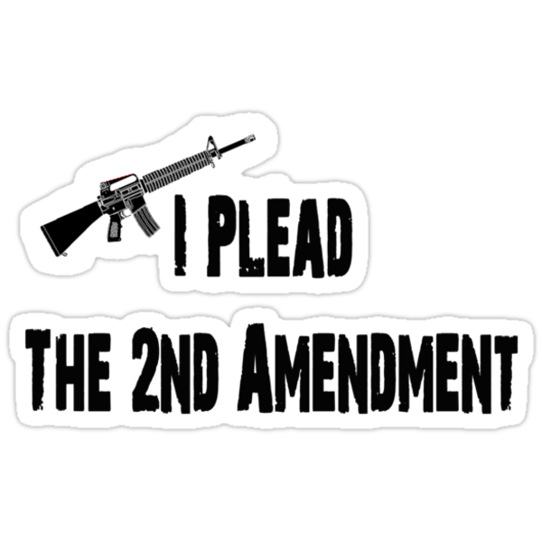 I PLEAD THE 2ND AMENDMENT by sturgils