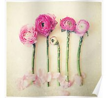 Asparagus and Pink Flowers Poster