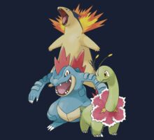Johto Starters Full EVOs by Stephen Dwyer