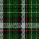 02224 London Moss, (Unidentified #46) Tartan Fabric Print Iphone Case by Detnecs2013