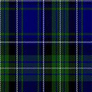 02226 Lady's Play, (Unidentified #48) Tartan Fabric Print Iphone Case by Detnecs2013