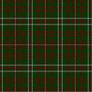 02229 Gentleman Max, (Unidentified #51) Fashion Tartan Fabric Print Iphone Case by Detnecs2013