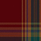 02238 Trolly Lolly (Unidentified #60) Fashion Tartan Fabric Print Iphone Case by Detnecs2013