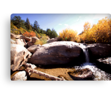 picture book fall II Canvas Print