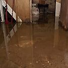 Flooded Basement Miami by addieturner62