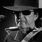 Tony Joe White @ Deni Blues & Roots Festival by Natalie Ord