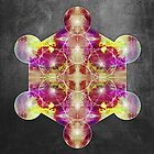 Metatron's Cube magenta yellow by filippobassano