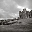 Bamburgh Castle England by mlphoto
