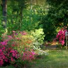 Neighbors Garden by Ginger  Barritt