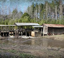 Sciples Mill by Ginger  Barritt