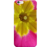 Pink and Yellow Primrose Macro iPhone Case/Skin