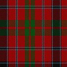 02250 Scolpaig Fragment (Unidentified) Tartan fabric Print Iphone Case by Detnecs2013