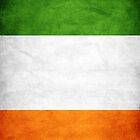 Irish Flag iPhone Case by sonicsandwands
