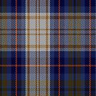 02270 Gordon Gone Wild Unidentified Tartan Fabric Print Iphone Case by Detnecs2013