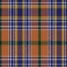 02274 Lindley Unidentified the Third Artefact Tartan Fabric Print Iphone Case by Detnecs2013