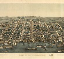Vintage Pictorial Map of Alexandria VA (1863) by alleycatshirts