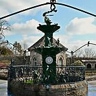 Froggie Fountain by Carol Bleasdale