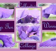 Banner - CC - Top Ten Winner by aprilann