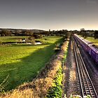 Culm Valley HST  by Rob Hawkins