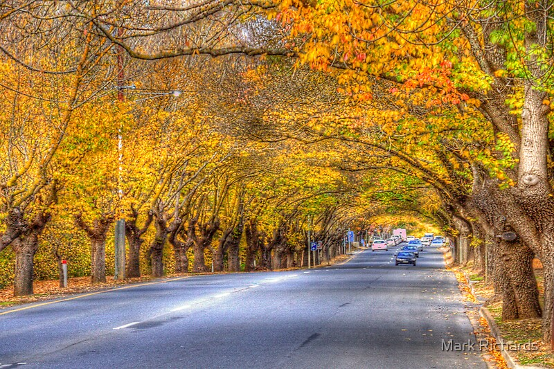 Hahndorf autumn adelaide hills sa by mark richards for Landscape design adelaide hills