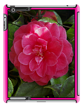 camelia pink ipad case by dedmanshootn