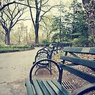 a place to sit and think by natalie angus