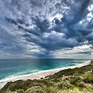 Look Up - Yanchep by Tyson Battersby