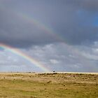 Countryside Rainbow - Tasmania, Australia by DestnUnknown