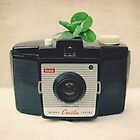 kodak  brownie and four leaf clover by Catherine  Regan