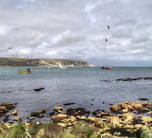 Swanage Bay by Chris Day