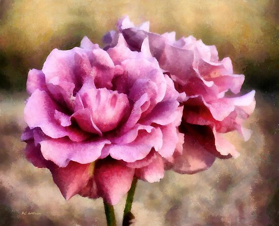 Sisters Before the Storm by RC deWinter