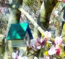 Birdhouse in Magnolia by Susan Savad