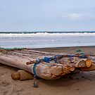 Ecuadorian Fishing Raft  by Paul Wolf