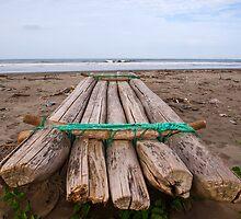 Ecuadorian Fishing Raft by Paul Wolf