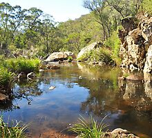 Micalong Creek Gorge by Terry Everson