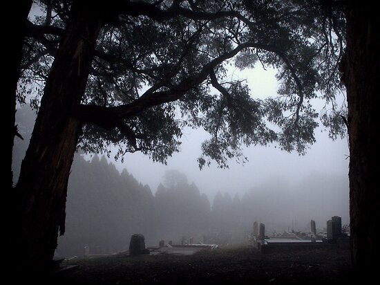 Norton Summit Cemetery by Ben Loveday