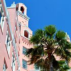 The Don CeSar by rosaliemcm